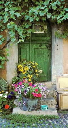 European photo of cat's dish,green door and flowers in Rothenburg(Bavaria), Germany by Dennis Barloga | Photos of Europe: Fine Art Photographs by Dennis Barloga