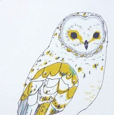 owl  ---- cuteness!!