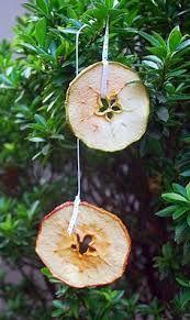 Afbeeldingsresultaat voor dried apple decorations
