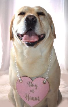 Dog Of Honor Engraved Wedding Sign With Pearl by KimeeKouture