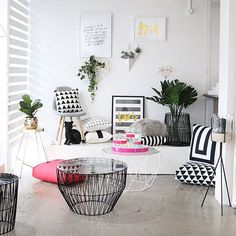 I spy a little black cat amongst our outdoor inspo, can you spot him?  #shoppingtime #outdoor #colour #newarrivals #portmelbourne #styledatcoco