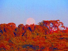 Lua em perigeu recebendo os raios solares num início da manhã