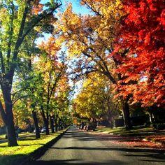 Boise, Idaho! So pretty!