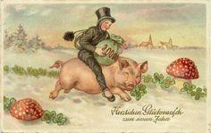 op het varken