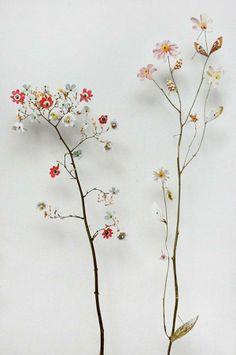 * pinterest: amycoddy * Brindille, Modern Metropolis, Flora Design, Flower Art, Flower Bomb, Flower Images, Flower Pictures, Dry Plants, Garden Plants