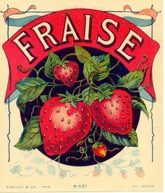 Free Fruit Labels --