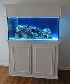 RJ'S Aquarium Stands - Contemporary - Custom built aquarium stands and cabinets Saltwater Tank, Saltwater Aquarium, Freshwater Aquarium, Aquarium Fish, Fish Aquariums, 90 Gallon Fish Tank, 55 Gallon Aquarium Stand, Animal Room, Aquarium Design