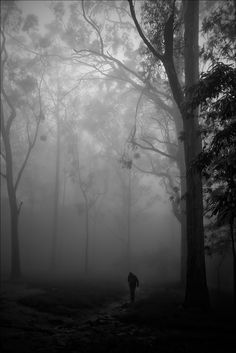 Stranger in the woods, Nandi Hills | Its none other than my … | Flickr