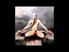 Meshuggah - ObZen [Full Album HQ]