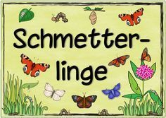 "Ideenreise: Themenplakat ""Schmetterlinge"""