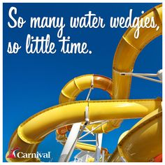 So many water wedgies, so little time.