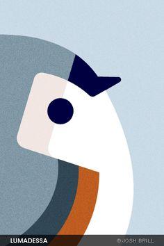 Josh Brill, lovely little chickadee iPhone wallpaper.