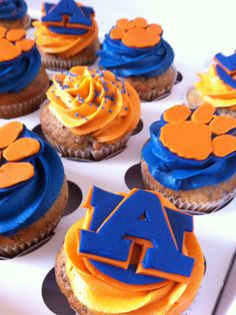 Auburn University themed cupcakes