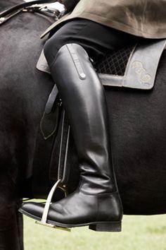 Richard Phibbs for Sport & Style: Golden Horses