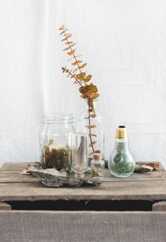 A Decor Setup Inspired By The Woods | Free People Blog #freepeople