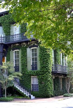 I can't say enough good things about Savannah. It's got sass like New Orleans, charm like Charleston, but it's definitely more laid back than either one. Think slower and more residential – perfect for families.