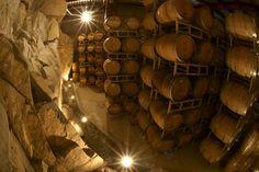 Vinos mexicanos y vinicolas de Mexico: para importar o exportar vinos mexicanos
