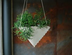 This porcelain hanging planter was hand built from a thin slab. Folded to form a cone-like shape, the edges are pinched together to form a seam.