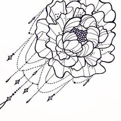 peony drawing - Google Search