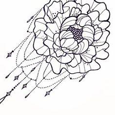 peony drawing - Google Search