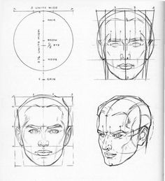 planes of the face loomis - Google Search
