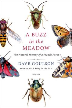 A Buzz in the Meadow ebook by Dave Goulson - Rakuten Kobo - A Buzz In The Meadow: The Natural History Of A French Farm - I Love Books, Books To Read, My Books, French History, Bee Keeping, Natural History, Nonfiction Books, Book Lists, Book Worms