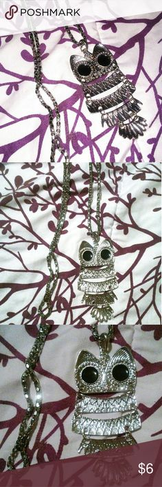 Silver Owl Necklace Long silver Owl Necklace. New. Never worn. no brand Jewelry Necklaces