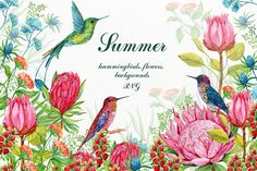 Hummingbirds Exotic Flowers Clipart