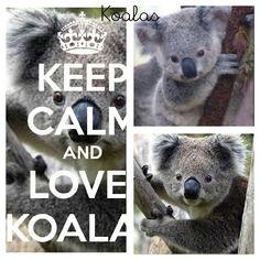 Keep calm and love koalas