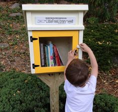 The Low-Tech Appeal of Little Free Libraries - Margret Aldrich - The Atlantic