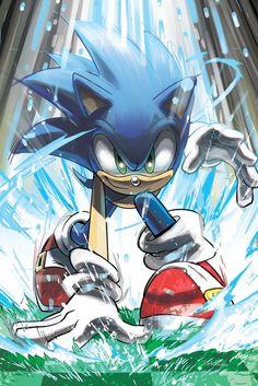 Sonic , uno de los pocos personajes que se preocupaba mas por la naturaleza y seres vivos que en el mismo. #6A