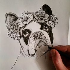 french bulldog , frenchies , flowers in hair , teunen , jeroen teunen , roses , sketch , sketchbook Bullterrier Tattoo, Black Pen Sketches, French Bulldog Tattoo, Mosaic Animals, Cute Funny Dogs, Pug, Work With Animals, Picture Logo, Wolf Tattoos