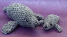 Haakpatroon zeekoe