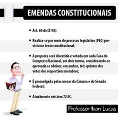 Direito Constitucional - Ivan Lucas