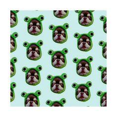 寝不足の予感😏 . . #frog#chihuahua#dog#love#cute#カエル#チワワ#チワワ部#チョコタン#チョコレートタン#ロンチー#ロングコートチワワ#わんこ#わんわん#いぬ#愛犬#可愛い#カワイイ#ケロちゃん