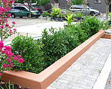 To Tackle Runoff, Cities Turn to Green Initiatives Urban stormwater runoff is a serious problem, overloading sewage treatment plants and polluting waterways. Now, various U.S. cities are creating innovative green infrastructure — such as rain gardens and roadside plantings — that mimics the way nature collects and cleanses water.