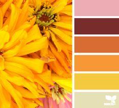 flora bright