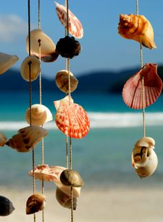 How to make wind chimes! love beach stuff so this is perfect!