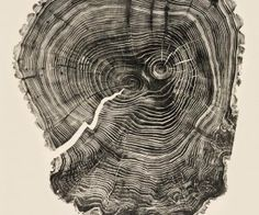 Bryan Nash Gill,s Woodcuts series. using recycled lumber shows patterns of tree rings resembling our own fingerprints, almost as if Mother Nature pressed her own thumb print into the design to show off her fine work.
