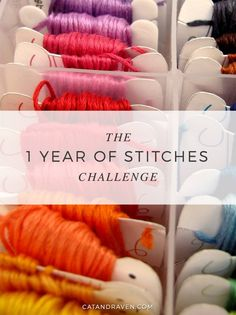 The 1 Year of Stitches Challenge http://www.catandraven.com/2017/01/06/1-year-stitches-challenge/