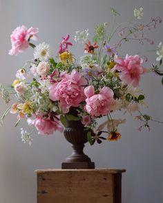 Flower Studio 라 포에티크 ( Beautiful Flower Arrangements, Silk Flower Arrangements, Flower Vases, Beautiful Flowers, Cactus Flower, Exotic Flowers, Flower Bouquet Wedding, Gerbera Wedding, Bridal Bouquets