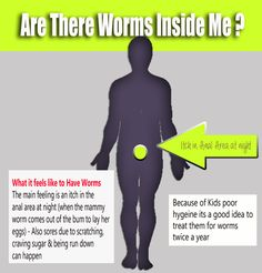 Threadworms are a common infestation. Symptoms include an itchy anus, feeling grinny & craving sugar. Online Pharmacy, Medical Conditions, Coming Out, Bugs, Saving Money, Conditioner, Medicine, Feelings, Memes