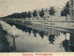 mooi nederland losse plaatjes 1905-1915 Haarlem westergracht
