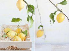 Fresh Lemons, via Flickr.