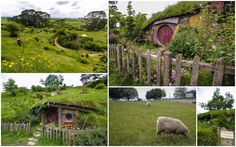 Channeling Your Inner Hobbit in New Zealand - Young Adventuress