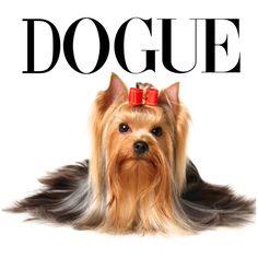 Estampa para camiseta Feminina 001978 Animals And Pets, Cute Animals, Cute Clipart, Dog Shirt, Little Dogs, Yorkshire Terrier, Pet Shop, Dog Mom, Dog Life