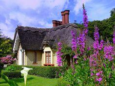 An old Killarney home