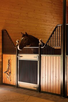 🐴RAMM's Tuscany horse stalls are custom-crafted at our Ohio manufacturing plant with hidden interior welds for superior strength and safety. Detailed craftsmen design and build Euro-inspired stalls giving additional ventilation with unique elegance. We have friendly experts ready to help you get started today! 📞800-826-1287 #tuscanystalls #designerhorsestalls #horsestable #horsestallideas #rammprojects #dreambarn #horses #equestrianideas