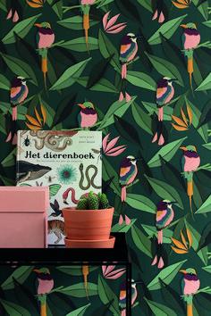 Wallpaper Designs, Designer Wallpaper, Groot, Nalu, Deco, Studio, Home Bedroom, Kids Room, Pastel