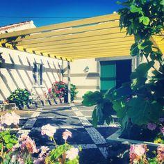 Adega Biscoitos,  ilha Terceira, Açores